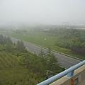 機場附近花草造景