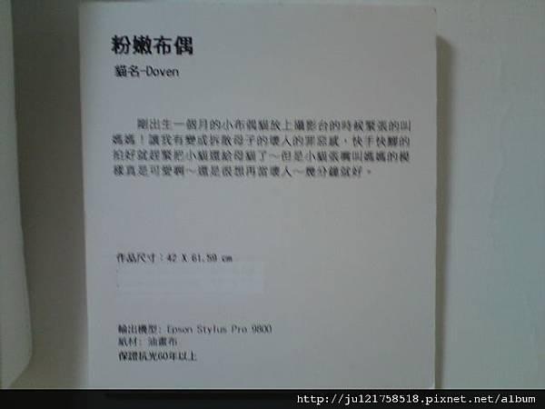 王傳賢貓咪攝影展