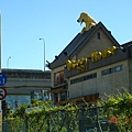 台北動物醫院