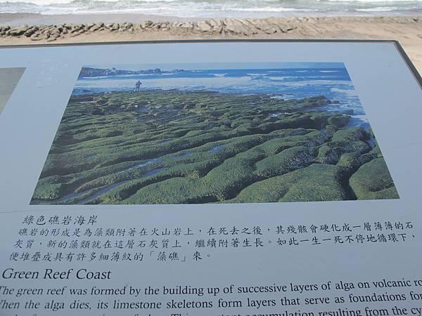 IMG_3025 老梅藻礁.jpg