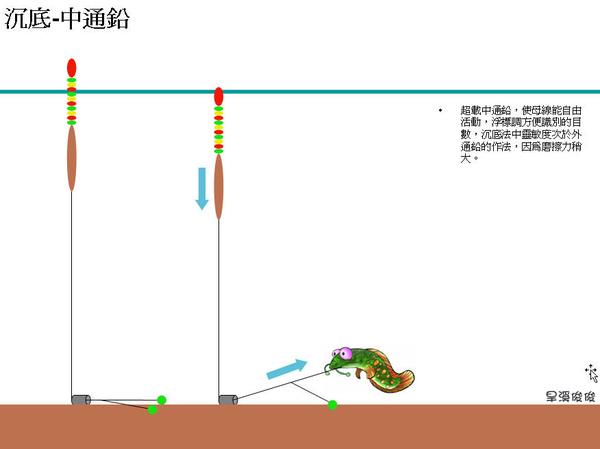 A浮標調法08.jpg