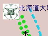 北海道大學精華區-4分拆一的16之1.jpg