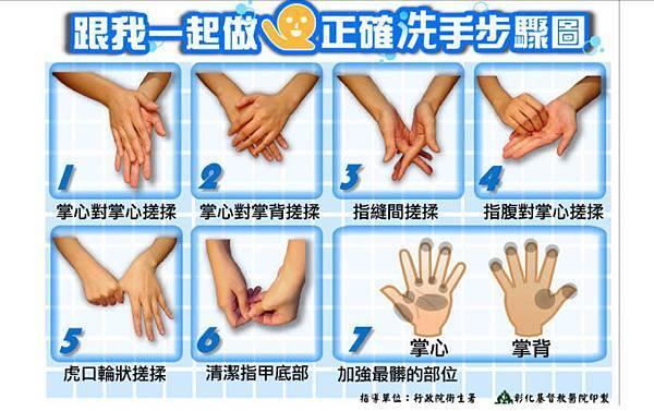 正確洗手步驟圖