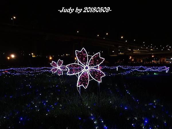 DSC08510.JPG