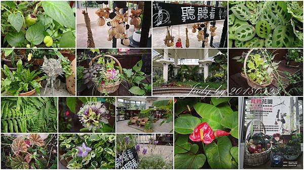 20180523-初夏田園展 食物花園-青年公園園藝展覽館.jpg