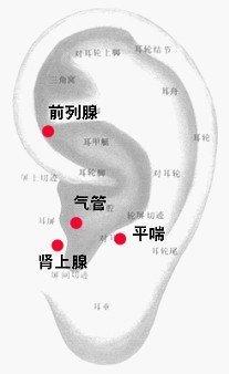 哮喘.jpg