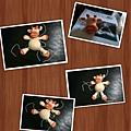 PhotoGrid_1381754268325.jpg