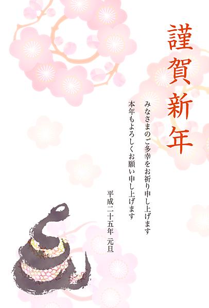jp13t_et_0020