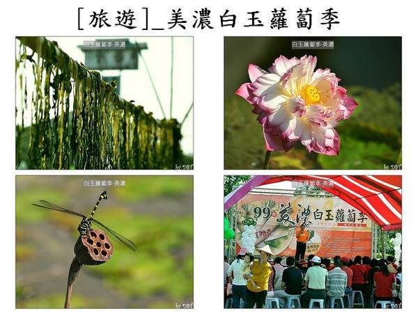 ContactSheet_[旅遊]_美濃白玉蘿蔔季