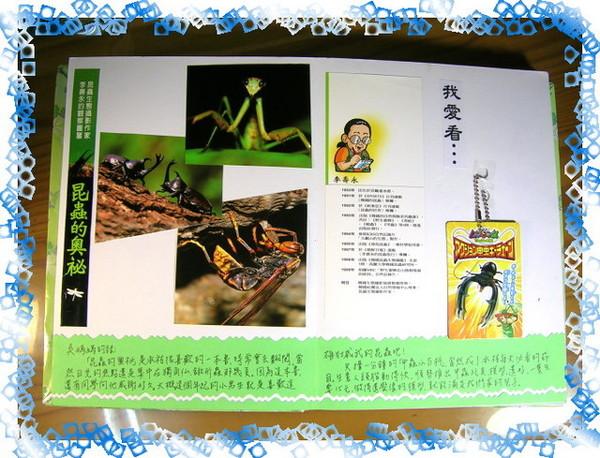 甲蟲玩具我也很愛