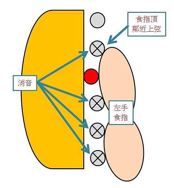 手指圖2.JPG