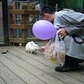 後來被同流合污的椒爸餵兔兔吃東西