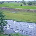 民宿後面的小河