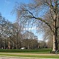 20070302 London 海德公園  很美啊