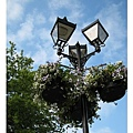 20070607Bristol路燈上都掛上花摟