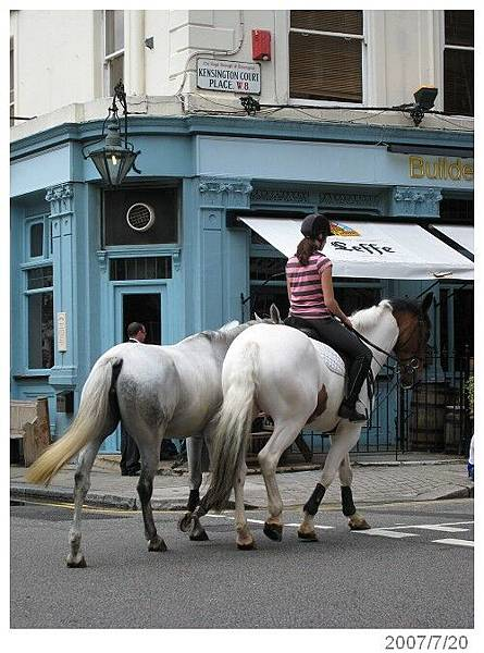20070720-22London 路上騎馬是怎麼回事啊