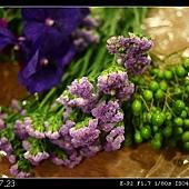 紫星辰&苦苓子