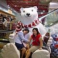 招牌大白熊