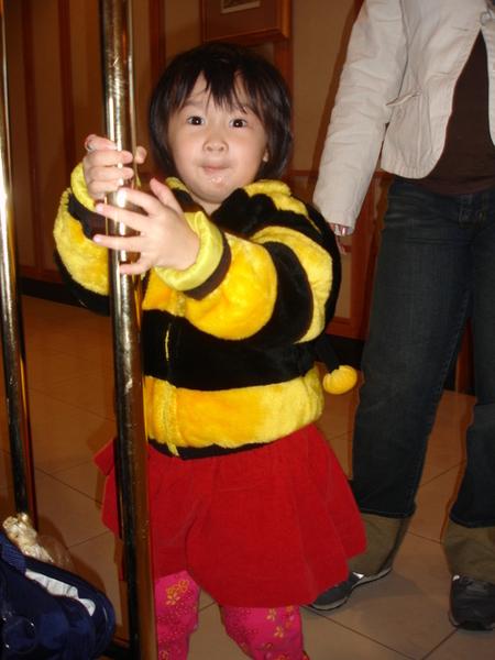 小蜜蜂Nana