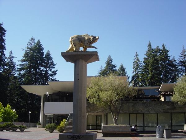 熊是柏克萊的招牌喔