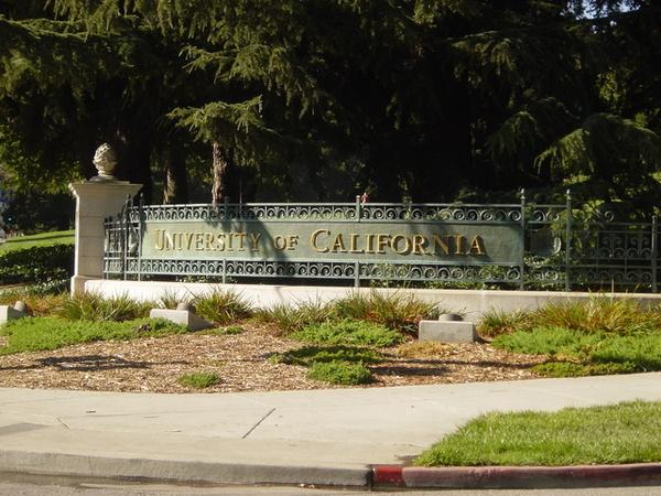 別忘了柏克萊也是加州大學的一份子喔