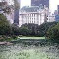 廣場飯店與中央公園