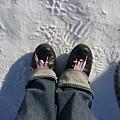 地下的冰真的很硬