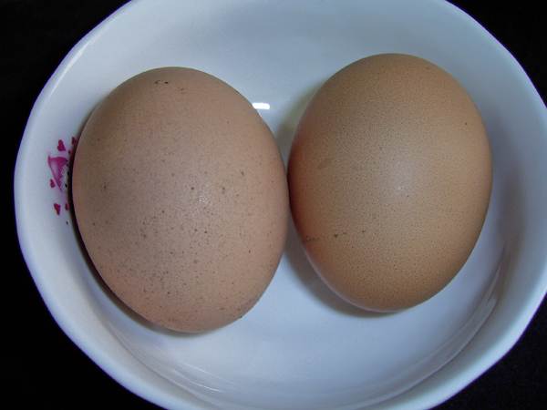 幸福蛋炒飯
