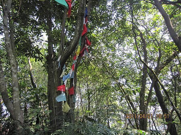 猴山岳、二格山 (73).JPG