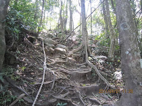 猴山岳、二格山 (106).JPG