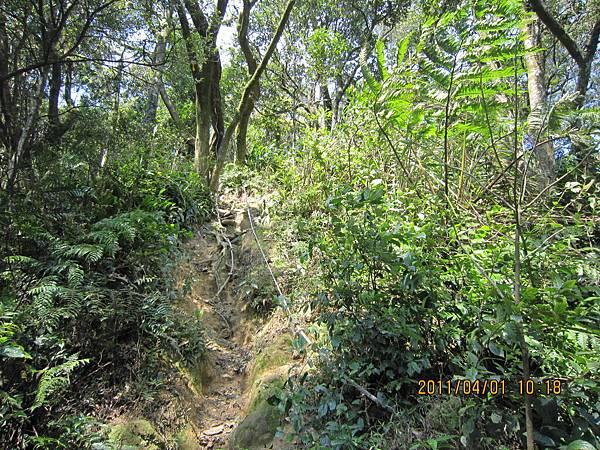 猴山岳、二格山 (47).JPG