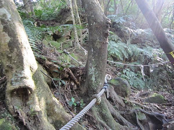 猴山岳、二格山 (13).JPG