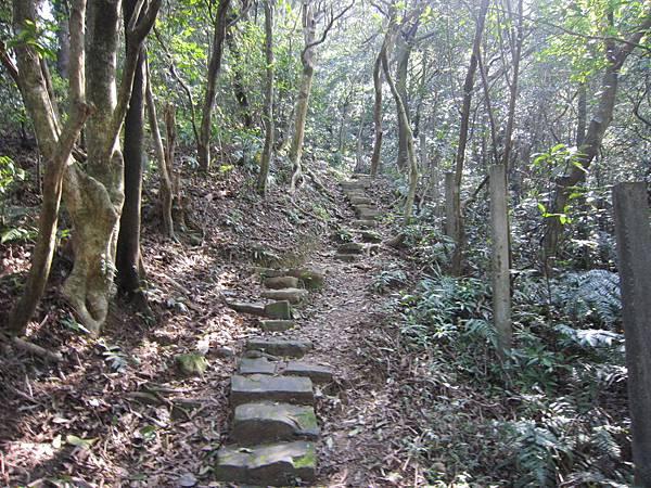 猴山岳、二格山 (6).JPG