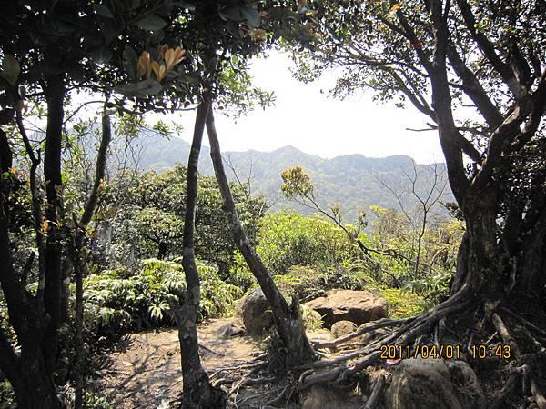 猴山岳、二格山 (67).JPG