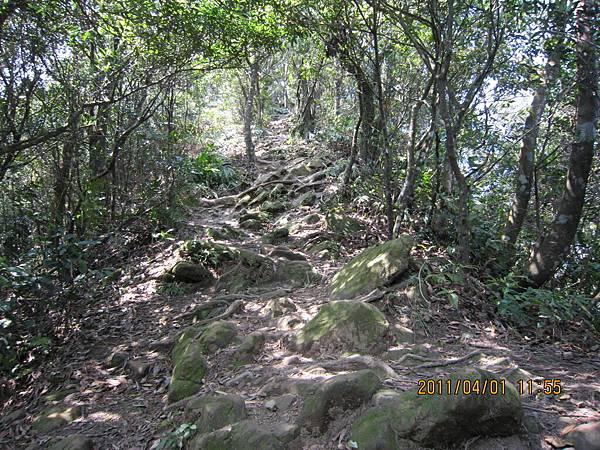猴山岳、二格山 (121).JPG
