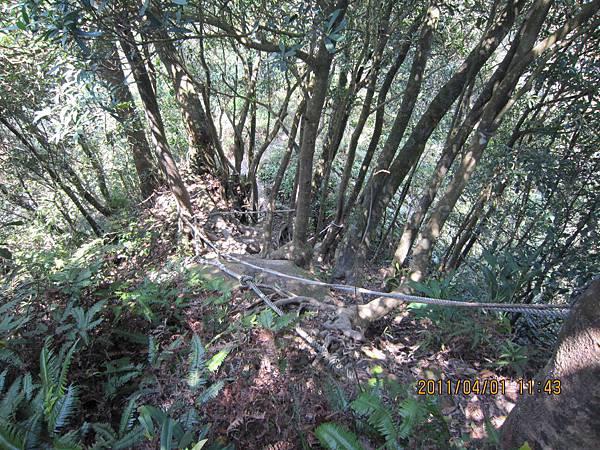 猴山岳、二格山 (110).JPG
