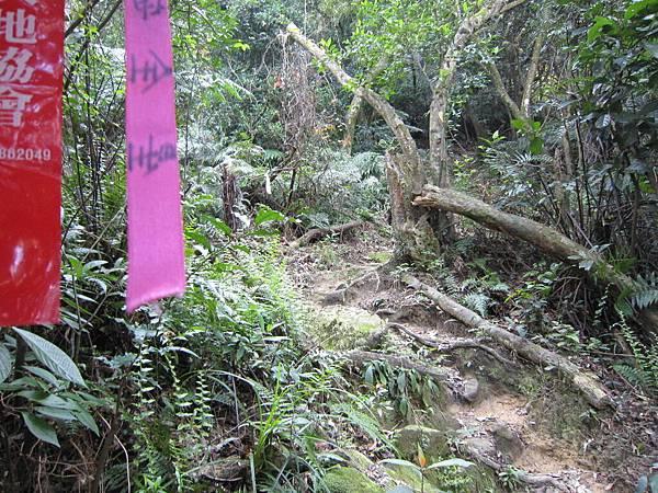 猴山岳、二格山 (9).JPG