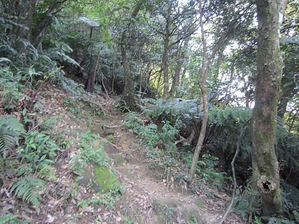 猴山岳、二格山 (11).JPG