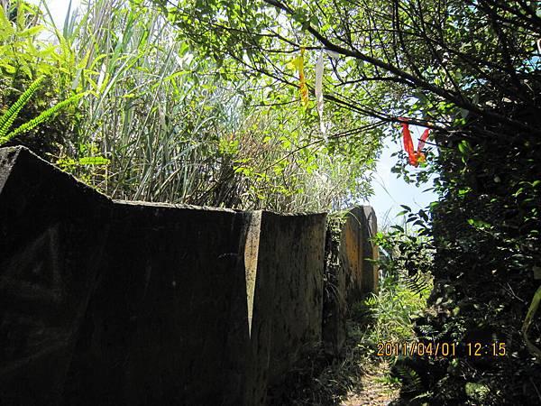猴山岳、二格山 (138).JPG