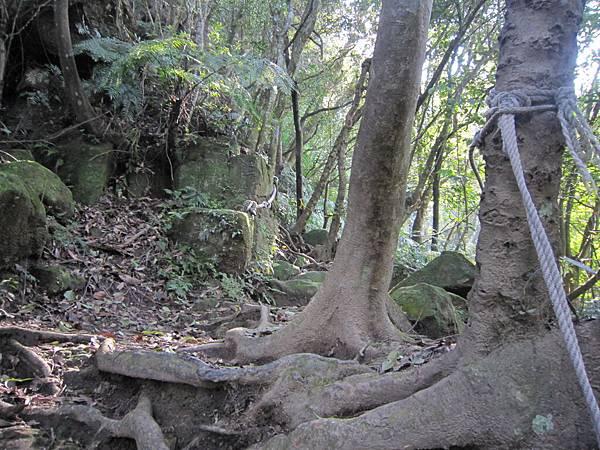 猴山岳、二格山 (12).JPG