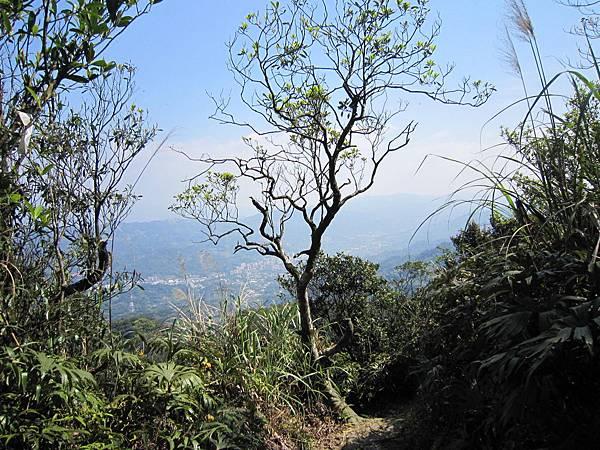 猴山岳、二格山 (30).JPG