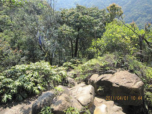 猴山岳、二格山 (68).JPG