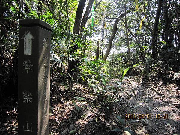 猴山岳、二格山 (57).JPG