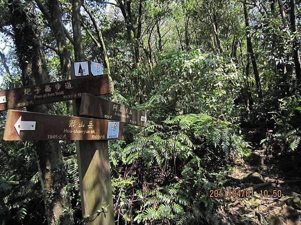 猴山岳、二格山 (71).JPG