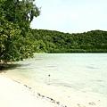 退潮時這全是沙灘