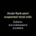 20121108_SKH_EUS教學第四章_急診超音波在泌尿科急症的應用和操作練習_頁面_10