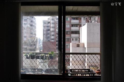 廚房窗台垂吊多肉區