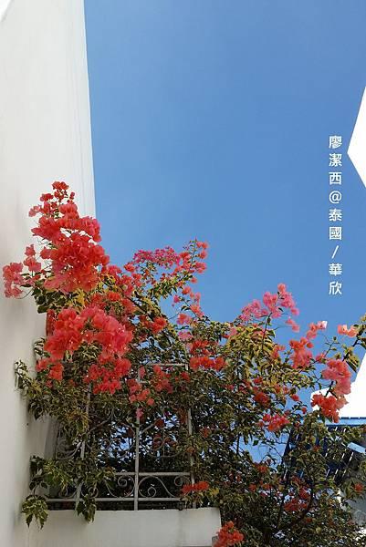 華欣/Santorini Park