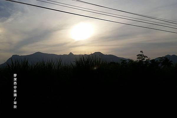 華欣/Hua Hin Hills Vineyard