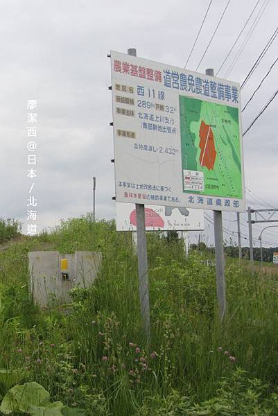 北海道/富良野雲霄飛車之路